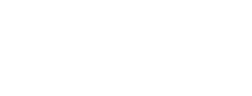 Words and Wands logo