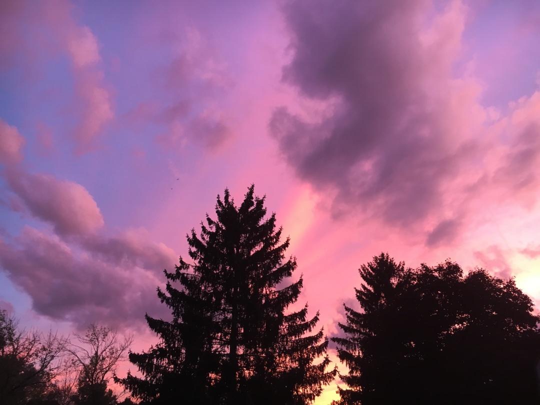 a very pink sunset (no filter)