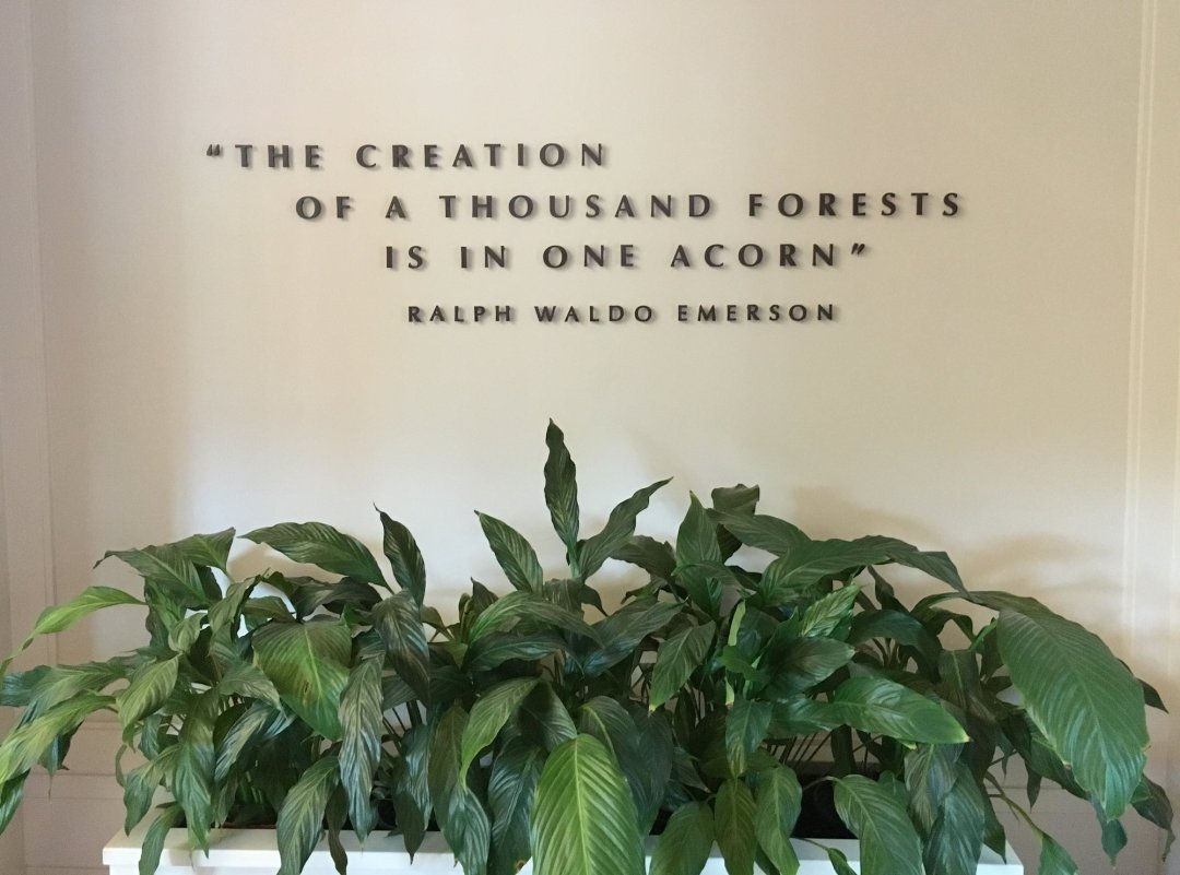 Sign reading the creation of a thousand forests is in one acorn - Ralph Waldo Emerson